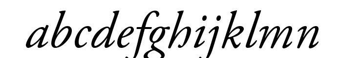 AGaramondPro-Italic Font - What Font Is