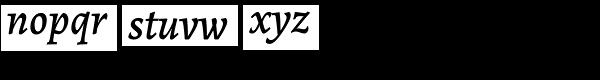 Alegreya ht Pro Medium Italic Font LOWERCASE