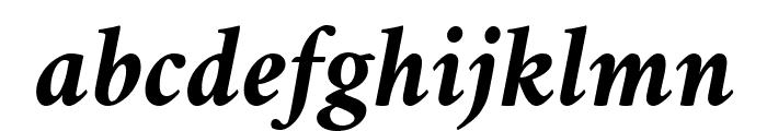 Amiri Bold Slanted Font LOWERCASE