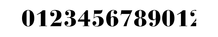 Bauer Bodoni Std 2 Black Font