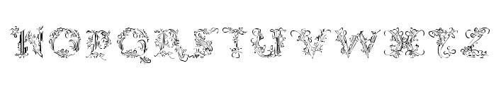 CalliPsoGrafia  Regular Font LOWERCASE