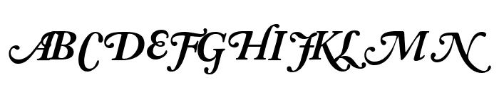 CaslonSwashBlackSCapsSSK Italic Font LOWERCASE