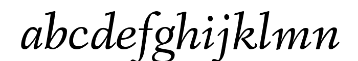 Fanwood Text TT Italic Font LOWERCASE