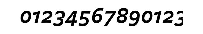 FF Balance OT Bold Italic Font OTHER CHARS