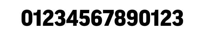 FF Good OT Black Font OTHER CHARS