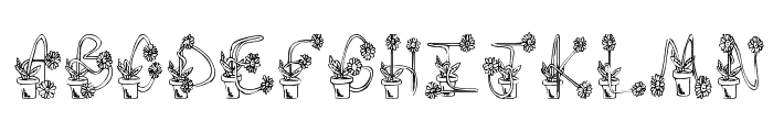 FlowerSketches  What Font is