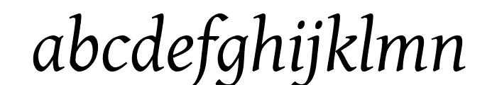 Gentium Italic Font LOWERCASE