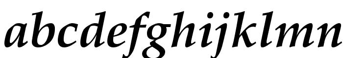 GFSDidot-BoldItalic Font LOWERCASE