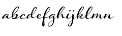Hummingbird Font LOWERCASE