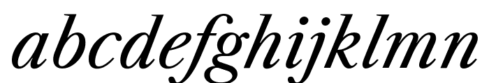 Libre Caslon Text Italic Font LOWERCASE