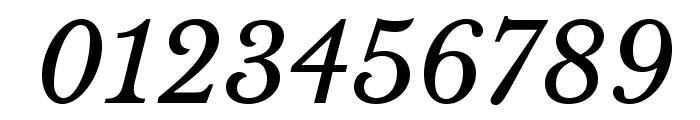 LibreBaskerville-Italic Font OTHER CHARS