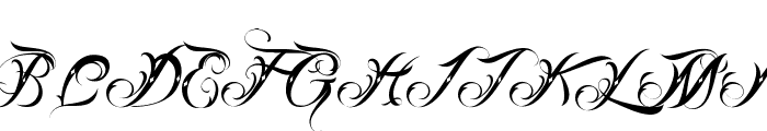 Lina Script Dot Demo  What Font is
