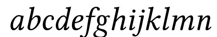 Linux Libertine O Italic Font LOWERCASE