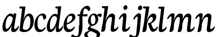 Neuton Cursive Font LOWERCASE