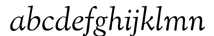 OFL Sorts Mill Goudy Italic TT Font LOWERCASE
