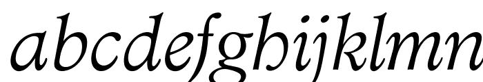 OPTIAdministerLightItalic Font LOWERCASE