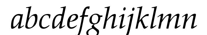 Pali Italic Font LOWERCASE