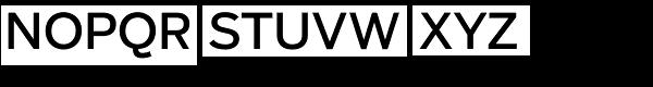 Salvo Sans Regular Font UPPERCASE