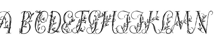 Springtime_Capitals Font UPPERCASE
