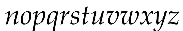 TeXGyrePagella-Italic Font LOWERCASE
