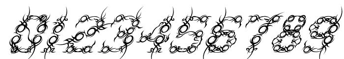 Tribou-Italic Font OTHER CHARS