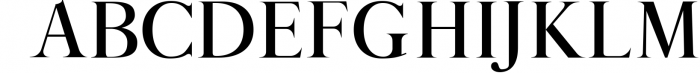 12 fonts in one bundle 8 Font UPPERCASE