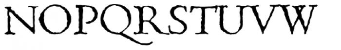 1499 Alde Manuce Pro Normal Font UPPERCASE