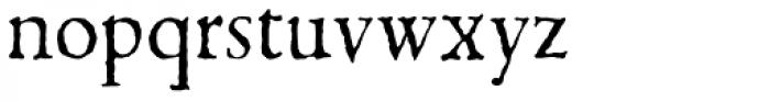 1499 Alde Manuce Pro Normal Font LOWERCASE