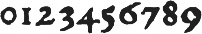 1529 Champ Fleury Pro otf (400) Font OTHER CHARS