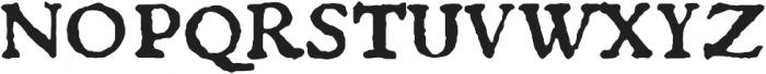 1529 Champ Fleury Pro otf (400) Font UPPERCASE