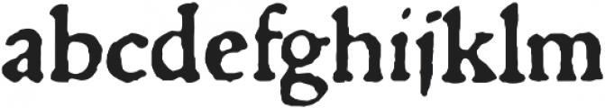 1529 Champ Fleury Pro otf (400) Font LOWERCASE