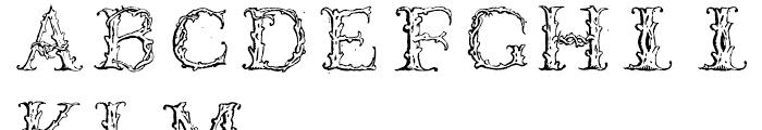 1565 Venetian Normal Font UPPERCASE