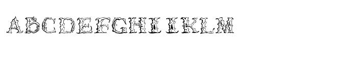 1565 Venetian Normal Font LOWERCASE