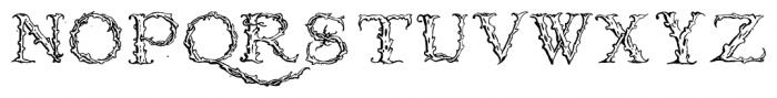 1565_Venetian Normal Font UPPERCASE