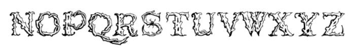 1565_Venetian Normal Font LOWERCASE