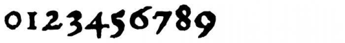 1529 Champ Fleury Pro Font OTHER CHARS
