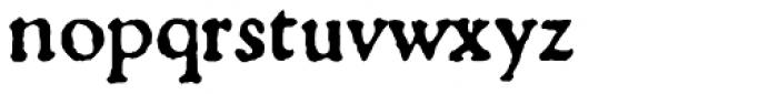 1529 Champ Fleury Pro Font LOWERCASE