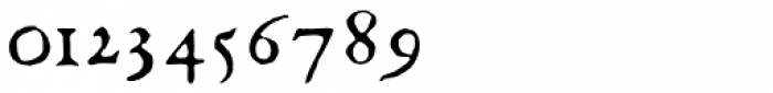 1585 Flowery Font OTHER CHARS