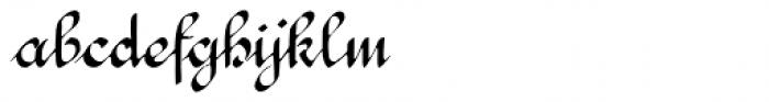 1890 Registers' Script Normal Font LOWERCASE