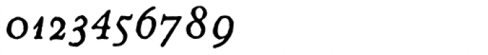 2009 GLC Plantin Italic Font OTHER CHARS