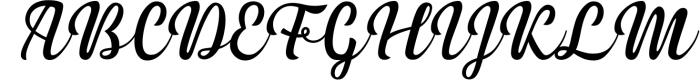 3 in 1 Premium script font 4 Font UPPERCASE