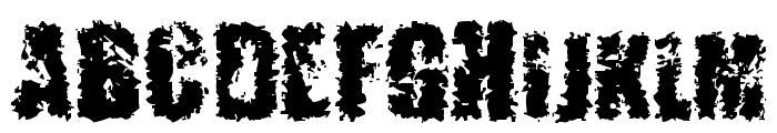 5+MENTARIOS Font UPPERCASE