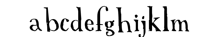A Font with Serifs Font LOWERCASE