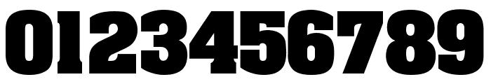 AardvarkBold Font OTHER CHARS