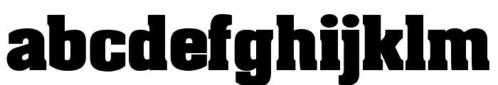 AardvarkBold Font LOWERCASE