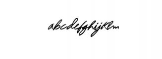 Absolute Script.OTF Font LOWERCASE