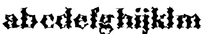 ABCTech Bodoni Cactus Font LOWERCASE