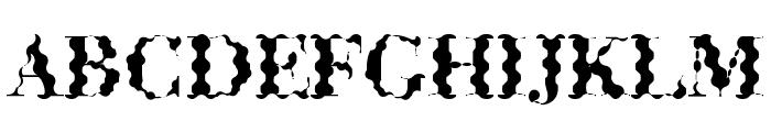 ABCTech Bodoni Wave Font UPPERCASE