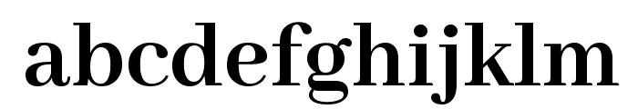 Abhaya Libre Bold Font LOWERCASE