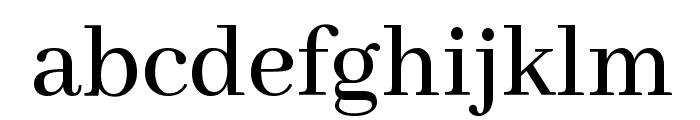 Abhaya Libre Medium Font LOWERCASE